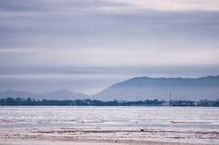 Πουλιά στην παραλία στη χαμηλή παλίρροια Στοκ Φωτογραφία