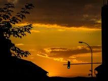 Πουλιά στο ηλιοβασίλεμα στοκ φωτογραφία