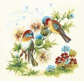 πουλιά Στοκ εικόνες με δικαίωμα ελεύθερης χρήσης