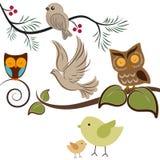 πουλιά Στοκ Εικόνα