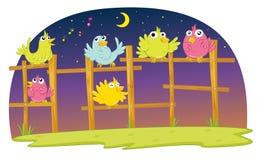 πουλιά ελεύθερη απεικόνιση δικαιώματος