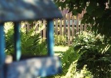 πουλιών τροφοδοτών μπλε χρώματος φωτός του ήλιου πράσινα φύλλα φρακτών κήπων ξύλινα Στοκ εικόνες με δικαίωμα ελεύθερης χρήσης
