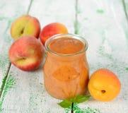 Πουρές φρούτων στοκ φωτογραφίες με δικαίωμα ελεύθερης χρήσης