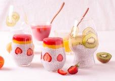 Πουτίγκα σπόρου chia καρύδων με το κάλυμμα φρούτων Στοκ Εικόνες