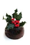 πουτίγκα Χριστουγέννων Στοκ φωτογραφία με δικαίωμα ελεύθερης χρήσης