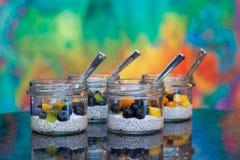 Πουτίγκες γάλακτος καρύδων σπόρου Chia με τα διάφορα φρούτα στοκ εικόνα με δικαίωμα ελεύθερης χρήσης