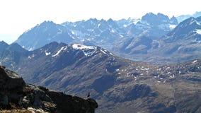 Πουλί βουνών Στοκ Εικόνες