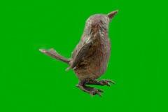 πουλί διακοσμήσεων πεπιεσμένου χαρτιού με ένα σχέδιο Στοκ Φωτογραφία