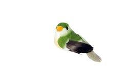 πουλί διακοσμητικό Στοκ Φωτογραφίες