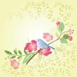 Πουλί και λουλούδι Στοκ εικόνες με δικαίωμα ελεύθερης χρήσης