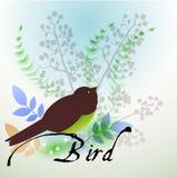 Πουλί με τα μοναδικά φτερά πέρα από το watercolor Στοκ Φωτογραφία