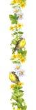 Πουλί, λουλούδια λιβαδιών, χορτάρια Watercolor άνοιξη Άνευ ραφής λουρίδα συνόρων Στοκ φωτογραφίες με δικαίωμα ελεύθερης χρήσης