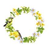 Πουλί, λουλούδια και άγρια χορτάρια Floral στεφάνι watercolor Στοκ Εικόνες