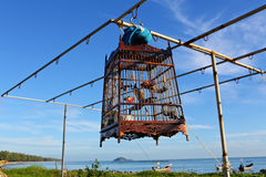 Πουλί σε ένα κλουβί Στοκ φωτογραφία με δικαίωμα ελεύθερης χρήσης