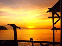Πουλί σκιαγραφιών ηλιοβασιλέματος Στοκ Φωτογραφία