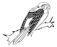 Πουλί στο άσπρο υπόβαθρο για το χρωματισμό Στοκ Εικόνες