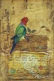 Πουλί του παραδείσου στο κίτρινο υπόβαθρο στοκ εικόνες με δικαίωμα ελεύθερης χρήσης
