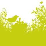Πουλί-φωλιά και νέα πουλιά Στοκ εικόνες με δικαίωμα ελεύθερης χρήσης