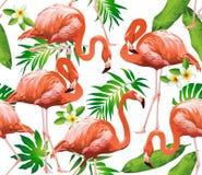Πουλί φλαμίγκο και τροπικά λουλούδια - άνευ ραφής σχέδιο Στοκ Φωτογραφίες