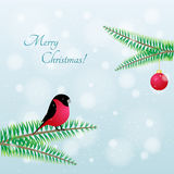 Πουλί Χριστουγέννων Διανυσματικό Bullfinch στον κλάδο ελεύθερη απεικόνιση δικαιώματος