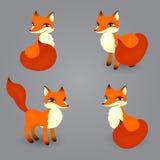 Που απομονώνεται η αλεπού θέτει Στοκ Εικόνες