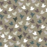πουλιά ζωηρόχρωμα Στοκ Φωτογραφία