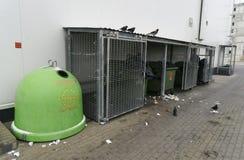 Πουλιά και εμπορευματοκιβώτια απορριμάτων κοντά στο κατάστημα Στοκ φωτογραφία με δικαίωμα ελεύθερης χρήσης