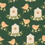 Πουλιά και birdhouses την άνοιξη/θερινός χρόνος Στοκ Εικόνες
