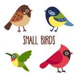 Πουλιά κινούμενων σχεδίων καθορισμένα απεικόνιση αποθεμάτων