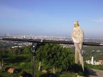 Πουλιά πάνω από το λόφο σε Hadyai, Songkhla, Ταϊλάνδη Στοκ φωτογραφία με δικαίωμα ελεύθερης χρήσης