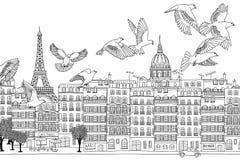 Πουλιά πέρα από τη Ρώμη διανυσματική απεικόνιση