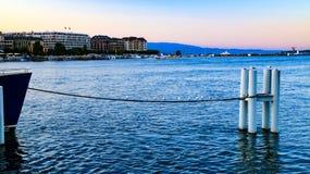 Πουλιά που στηρίζονται μπροστά από τη Γενεύη, Ελβετία Στοκ Εικόνες