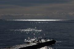 Πουλιά στον κυματοθραύστη Στοκ Φωτογραφία