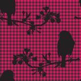 Πουλιά στον κλάδο του κερασιού επίσης corel σύρετε το διάνυσμα απεικόνισης Στοκ Εικόνες
