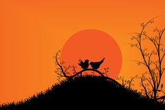 Πουλιά στο δέντρο κατά τη διάρκεια του ηλιοβασιλέματος & του πορτοκαλιού ουρανού Στοκ Φωτογραφία