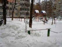 Πουλιά στο χιόνι Στοκ εικόνα με δικαίωμα ελεύθερης χρήσης