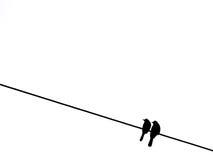 πουλιά δύο καλώδιο Στοκ εικόνα με δικαίωμα ελεύθερης χρήσης
