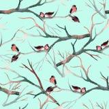 Πουλιά Watercolor στους κλάδους δέντρων Στοκ Φωτογραφία
