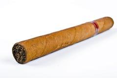 πούρο Κουβανός Στοκ Εικόνα