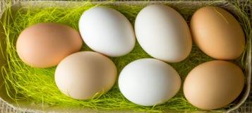 Πολλά αυγά κοτόπουλου μπεζ και το λευκό βρίσκονται ένα αυτί στον ξύλινο πίνακα στοκ εικόνα