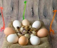 Πολλά αυγά ορτυκιών και κοτόπουλου για τη ζωγραφική που βρίσκεται σε έναν σωρό ξύλινο επιτραπέζιο sackcloth που στέκεται δίπλα gi στοκ φωτογραφία με δικαίωμα ελεύθερης χρήσης