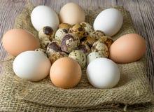 Πολλά αυγά ορτυκιών και κοτόπουλου για τη ζωγραφική που βρίσκεται σε έναν ξύλινο πίνακα που καλύπτεται με burlap στοκ εικόνα