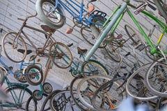 Πολλά ζωηρόχρωμα ποδήλατα που σε μια σειρά στοκ φωτογραφία με δικαίωμα ελεύθερης χρήσης