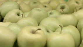 Πολλά κιτρινοπράσινα μήλα φιλμ μικρού μήκους