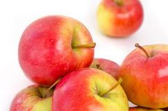 Πολλά μήλα που απομονώνονται στο άσπρο υπόβαθρο Στοκ φωτογραφίες με δικαίωμα ελεύθερης χρήσης