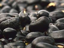 Πολλά μαύρα φασόλια στο υπόβαθρο Στοκ Εικόνες