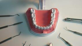 Πολλά οδοντικά όργανα Κινηματογράφηση σε πρώτο πλάνο Εστίαση μέσα απόθεμα βίντεο