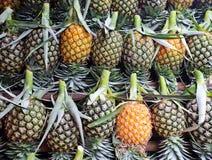 Πολλά φρέσκα φρούτα ανανά Στοκ φωτογραφία με δικαίωμα ελεύθερης χρήσης