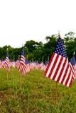 Πολλές αμερικανικές σημαίες Στοκ Εικόνες