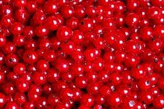 Πολλές κόκκινες σταφίδες ως σύσταση Στοκ Εικόνες